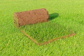 Tijdelijke stop levering graszoden