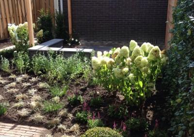 Project tuin Zoetermeer