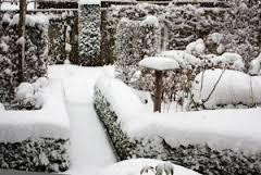 sneeuwintuin